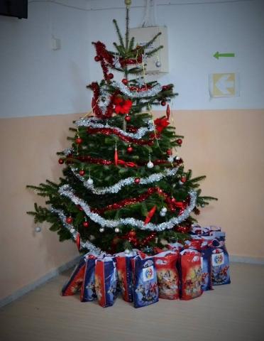Bucuria cadoului la AMVVD Galați